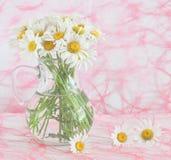 Кувшин с стоцветами Стоковые Изображения