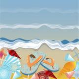 Кувырки и раковины на пляже Бесплатная Иллюстрация