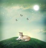 Кугуар в вершине холма фантазии с бабочками Стоковые Изображения RF