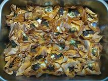 Кудрявые горячие сваренные tartlets сыра Стоковые Изображения