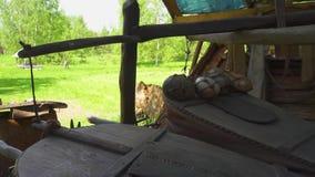 Кузнец работая с мехами кузнеца в кузнице : сток-видео