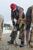 Кузнец регулирует копыта лошади стоковое фото rf
