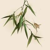 Кузнечик на бамбуковых листьях иллюстрация вектора