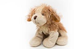 Кукла собаки Стоковое Изображение