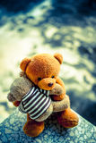 2 куклы медведя Стоковое Фото