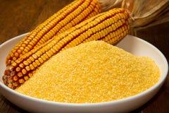 Кукурузная мука Стоковое Фото