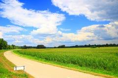 Кукурузное поле и дорога стоковая фотография