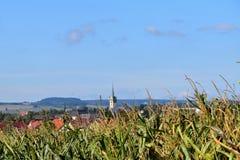 Кукурузное поле и предпосылка города Город Policka Стоковая Фотография