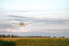 Кукурузное поле опылителя полей распыляя Стоковое фото RF