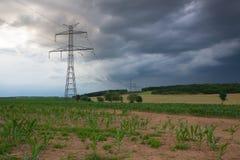 Кукурузное поле перед тяжелым штормом Стоковая Фотография
