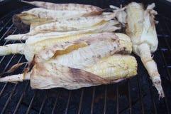 Кукурузные початки на гриле Стоковое Изображение RF