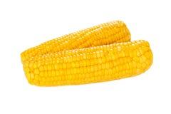 Кукурузный початок изолированный на белизне Стоковые Фотографии RF