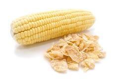 Кукурузный початок  Стоковые Фото