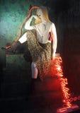 Кукла в окне магазина Стоковые Изображения RF