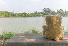 Кукла медведя сидя на лагуне Стоковое Изображение