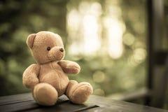 Кукла медведя Стоковое Изображение