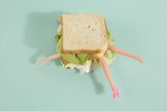 Кукла сандвича Стоковые Фото