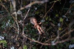 кукла страшная Насилие над ребенком уголовное место стоковые фото