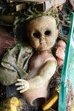 кукла страшная Стоковые Фотографии RF