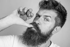 ( Кулак клубник владениями хипстера бородатый как бутылка сока Сторона человека строгая насладиться свежим напитком стоковые изображения rf