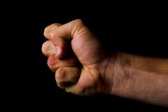 кулачок дракой принципиальной схемы Стоковые Фотографии RF
