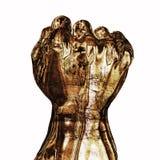 кулачок Стоковые Фото