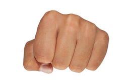 кулачок Стоковые Изображения RF