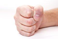 Кулачок стоковое изображение rf