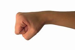 кулачок Стоковое Изображение