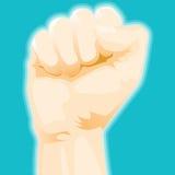 кулачок Стоковая Фотография RF