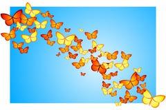 Кулига бабочки стоковое фото rf
