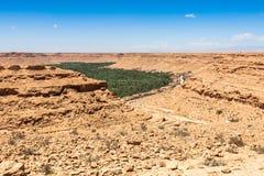 Культивируемые поля и ладони в Северной Африке a Errachidia марокканськой Стоковые Фото