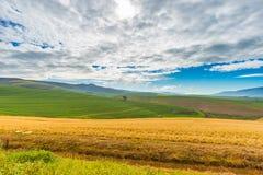Культивируемые поля и фермы с сценарным небом, земледелием ландшафта Южная Африка внутренная, урожаи хлопьев стоковое изображение