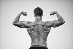 Культурист показывая мышцы, бицепс и трицепс Стоковое Изображение