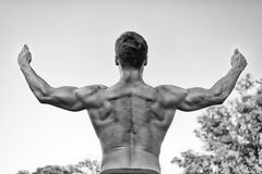 Культурист показывая мышцы, бицепс и трицепс Стоковое Фото