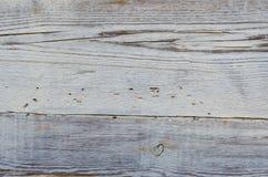 Куполы на виске Стоковые Изображения RF