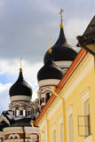 Куполы Tallinn, эстонии Стоковые Изображения RF