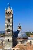 купол siena собора Стоковые Фото