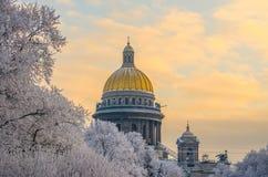 Купол дворца ` s St Исаак на заходе солнца и деревьев в изморози Стоковое Фото