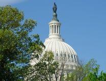 Купол здания капитолия Соединенных Штатов стоковая фотография rf