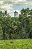 Купол церков Иоанна Крестителя в Kolomenskoye Стоковое Фото