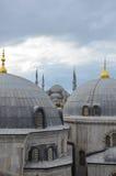 Куполы мечети Стоковая Фотография RF