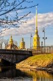 Куполы собора St Peter и Пола Стоковые Фото