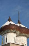 Куполы старого собора Стоковые Фотографии RF