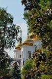 куполы Стоковое Изображение RF