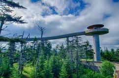 Купол Clingmans - большой национальный парк закоптелых гор Стоковые Изображения