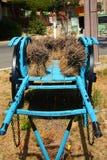 Курган с laverder 3 Стоковое Фото