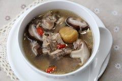 Куриный суп гриба каштана Стоковая Фотография