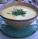 Куриный суп стоковое фото rf