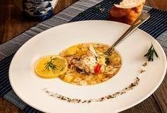 Куриный суп на белой плите с специями стоковое фото rf